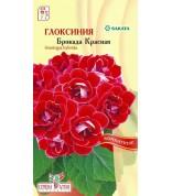 Глоксиния Брокада Красная F1 (комн.) (СА) ц/п