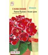 Глоксиния Аванти Красная с бел. краем комн(СА) ц/п