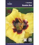 Лилейник Bumble Bee /1