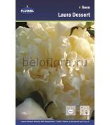 Пион Laura Dessert /1