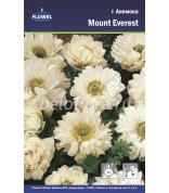 Анемона Mount Everest 6/7 Флюв.(махр)  /15