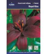 Лилия Royal Kiss азиат.12-14 /5